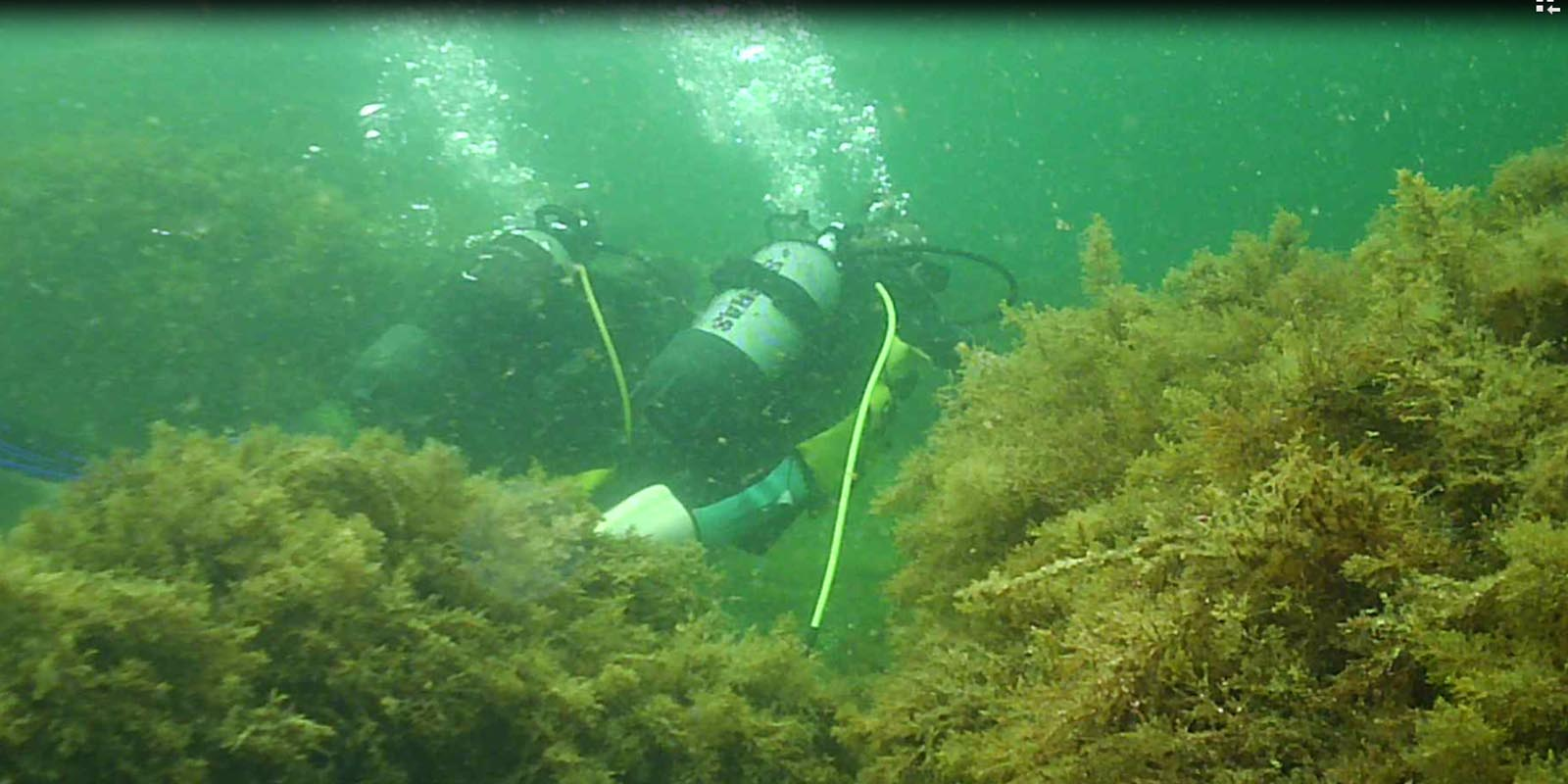 diving bulgaria