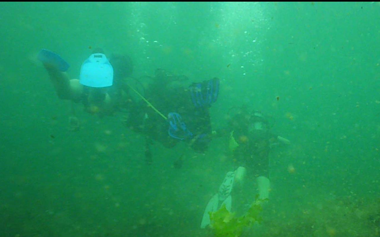 diving bulgaria2