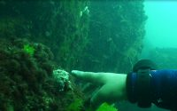 diving bulgaria7