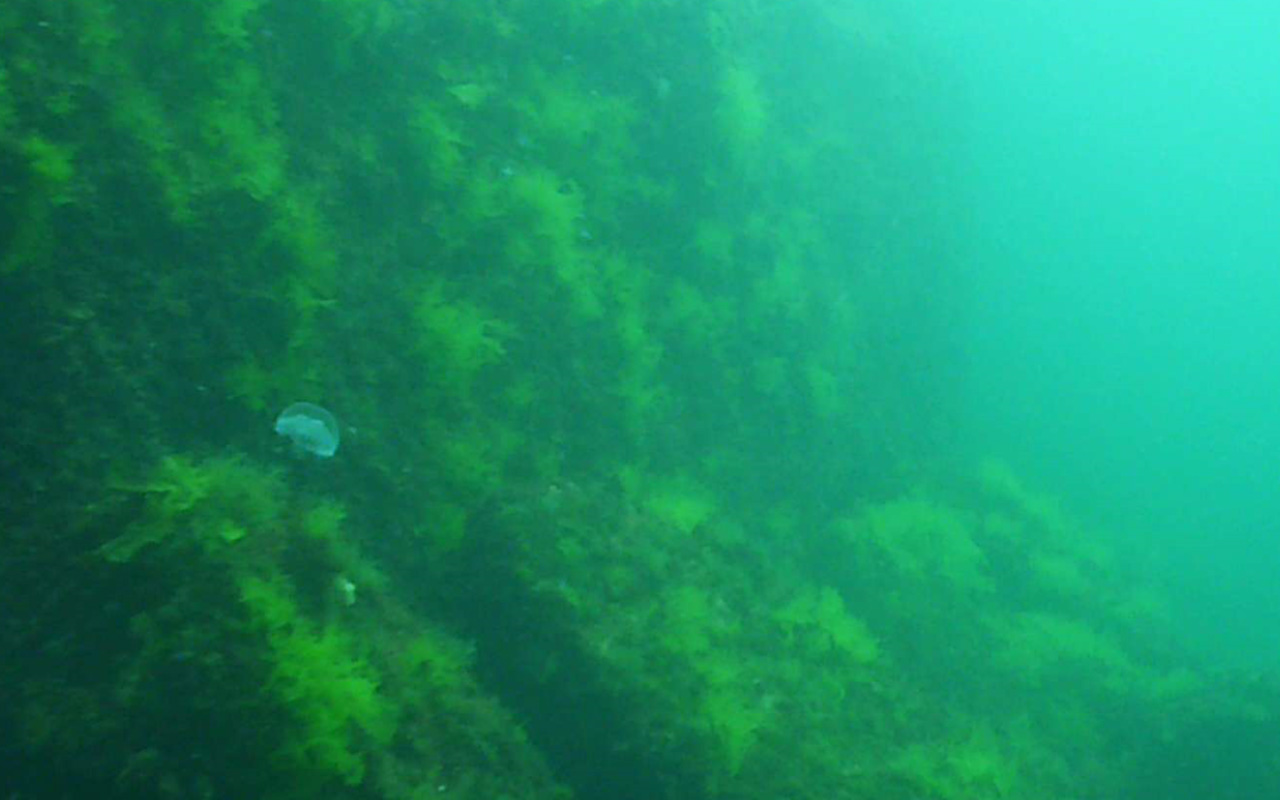 diving bulgaria8