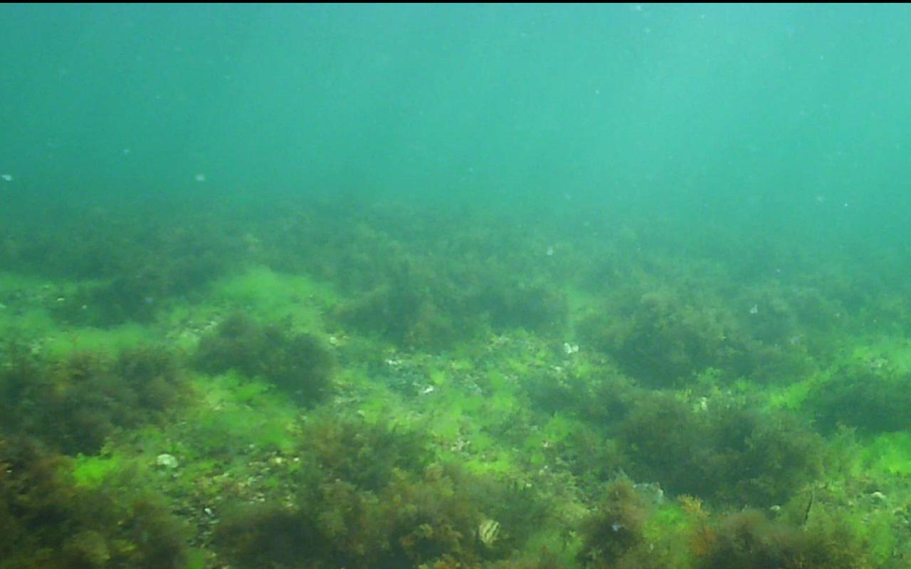 diving bulgaria9